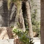 olivera terraza
